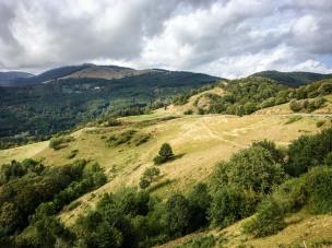Ausblick auf die tolle Höhenstraße Route des Crètes im Elsass